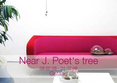 20080227 Near J. Poet's tree