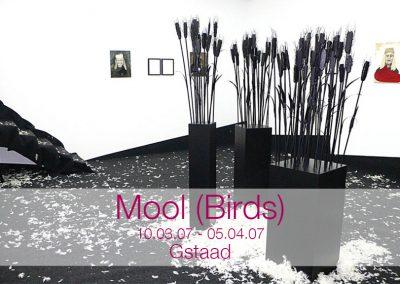 20070405 Mool (Birds)